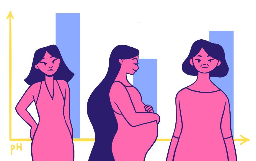 Уровень кислотности влагалища меняется втечение жизни женщины. Вчастности, естественные изменения происходят всвязи сменструальным циклом ивовремя беременности. Также кислотность может меняться при некоторых заболеваниях: дисбактериозе влагалища, инфекционно-воспалительных заболеваниях половой сферы, болезнях яичников, щитовидной железы, сахарном диабете.